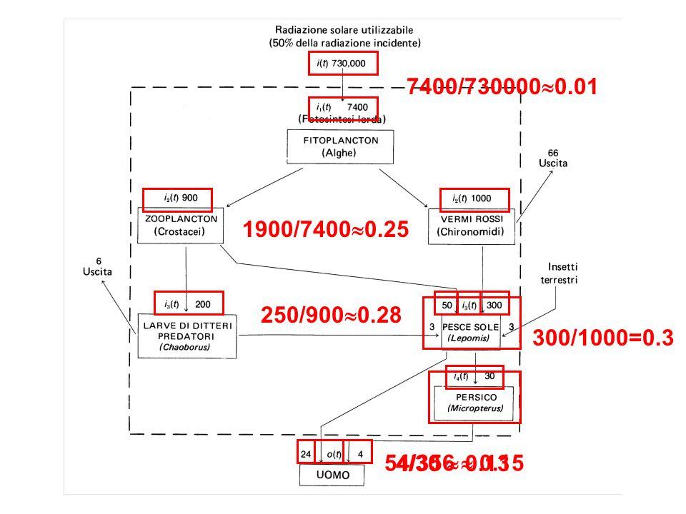 7400/730000 0.01 1900/7400 0.25 250/900 0.28 300/1000=0.3 54/356 0.15 4/30 0.13