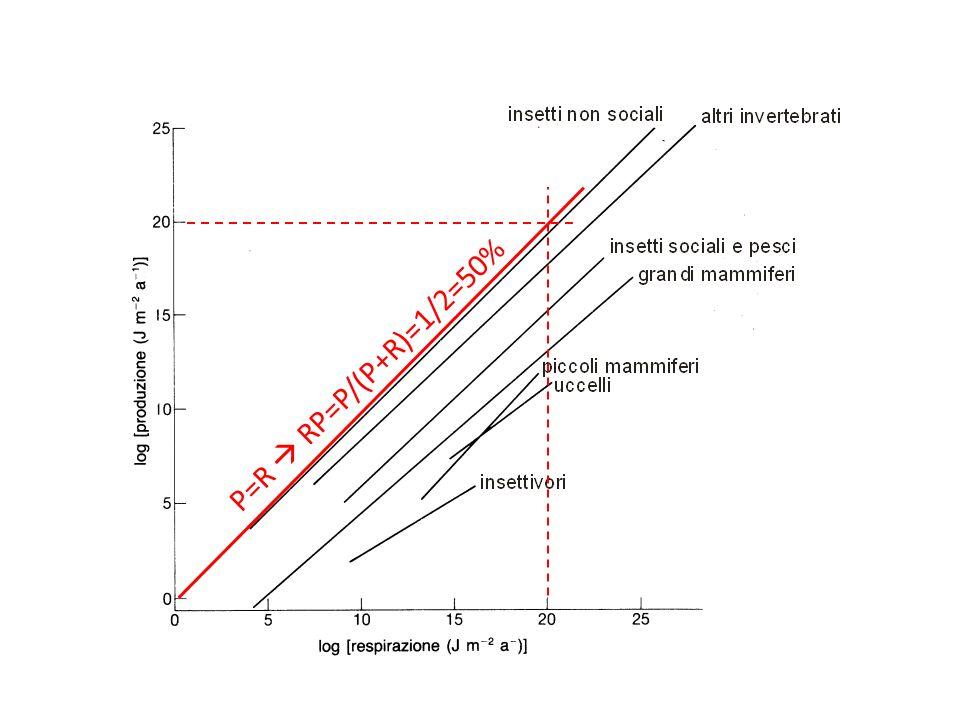 P=R RP=P/(P+R)=1/2=50%