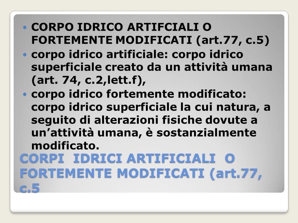 CORPI IDRICI ARTIFICIALI O FORTEMENTE MODIFICATI (art.77, c.5 CORPO IDRICO ARTIFCIALI O FORTEMENTE MODIFICATI (art.77, c.5) corpo idrico artificiale: