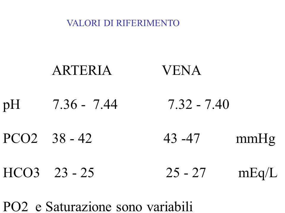 ARTERIA VENA pH 7.36 - 7.44 7.32 - 7.40 PCO2 38 - 42 43 -47 mmHg HCO3 23 - 25 25 - 27 mEq/L PO2 e Saturazione sono variabili VALORI DI RIFERIMENTO