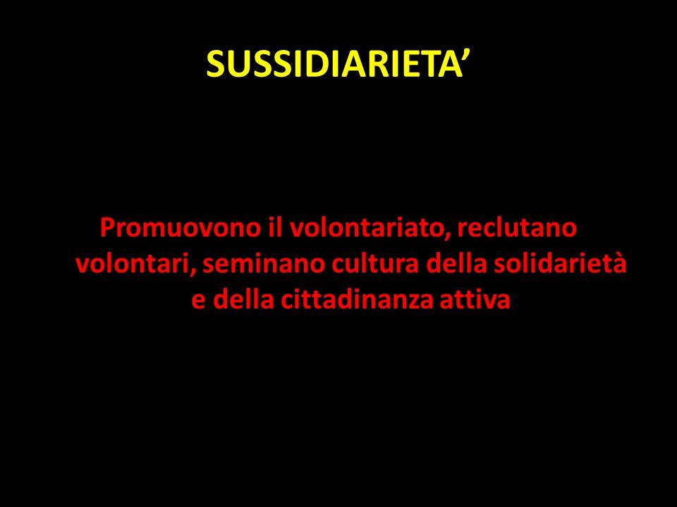 SUSSIDIARIETA Promuovono il volontariato, reclutano volontari, seminano cultura della solidarietà e della cittadinanza attiva