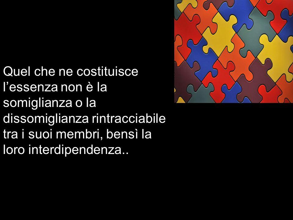 Quel che ne costituisce lessenza non è la somiglianza o la dissomiglianza rintracciabile tra i suoi membri, bensì la loro interdipendenza..