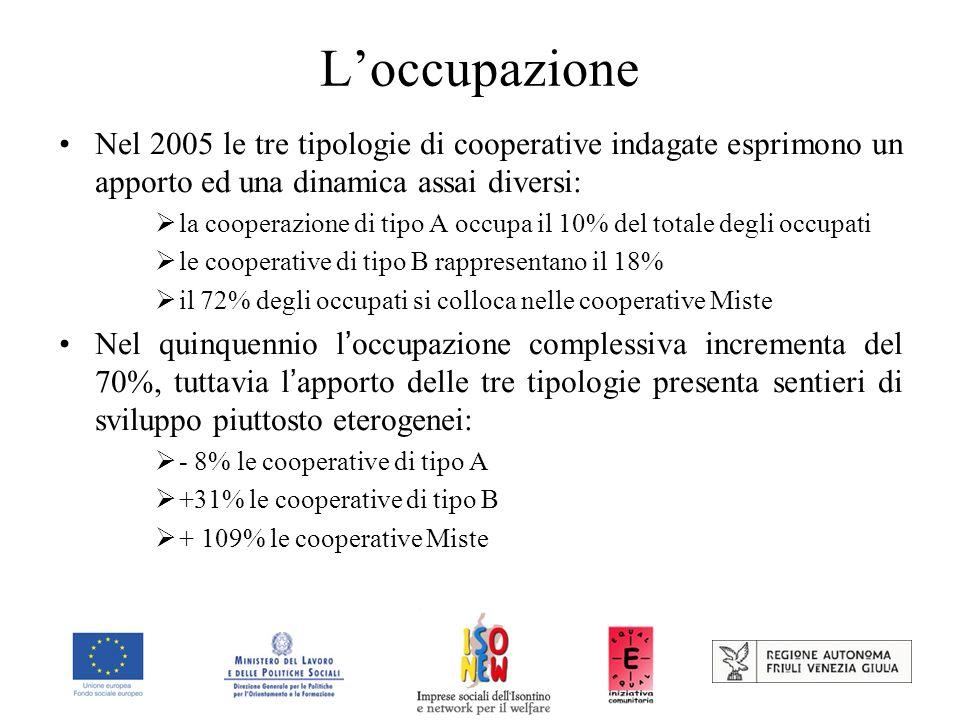 Loccupazione Nel 2005 le tre tipologie di cooperative indagate esprimono un apporto ed una dinamica assai diversi: la cooperazione di tipo A occupa il 10% del totale degli occupati le cooperative di tipo B rappresentano il 18% il 72% degli occupati si colloca nelle cooperative Miste Nel quinquennio l occupazione complessiva incrementa del 70%, tuttavia l apporto delle tre tipologie presenta sentieri di sviluppo piuttosto eterogenei: - 8% le cooperative di tipo A +31% le cooperative di tipo B + 109% le cooperative Miste