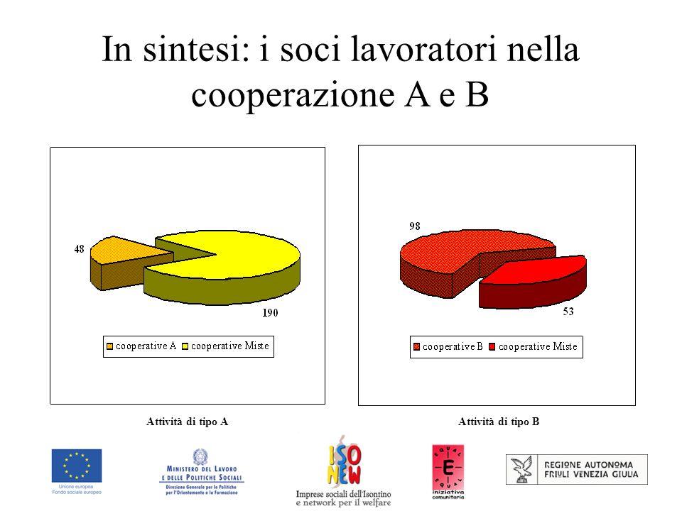 In sintesi: i soci lavoratori nella cooperazione A e B Attività di tipo AAttività di tipo B