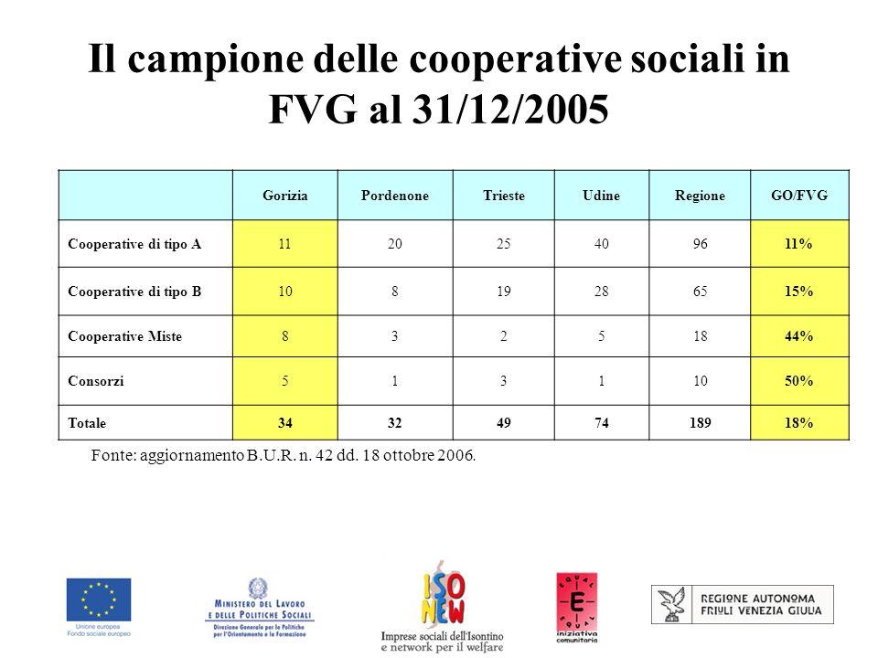 Il campione delle cooperative sociali in FVG al 31/12/2005 GoriziaPordenoneTriesteUdineRegioneGO/FVG Cooperative di tipo A112025409611% Cooperative di tipo B10819286515% Cooperative Miste83251844% Consorzi51311050% Totale3432497418918% Fonte: aggiornamento B.U.R.