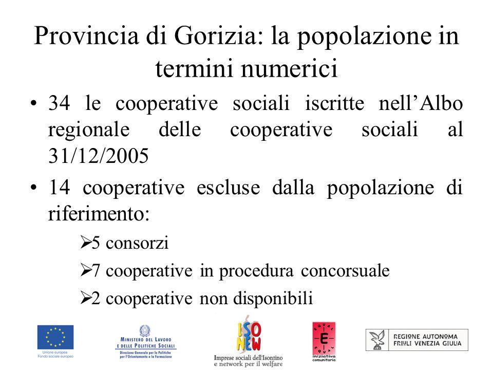 Provincia di Gorizia: la popolazione in termini numerici 34 le cooperative sociali iscritte nellAlbo regionale delle cooperative sociali al 31/12/2005 14 cooperative escluse dalla popolazione di riferimento: 5 consorzi 7 cooperative in procedura concorsuale 2 cooperative non disponibili