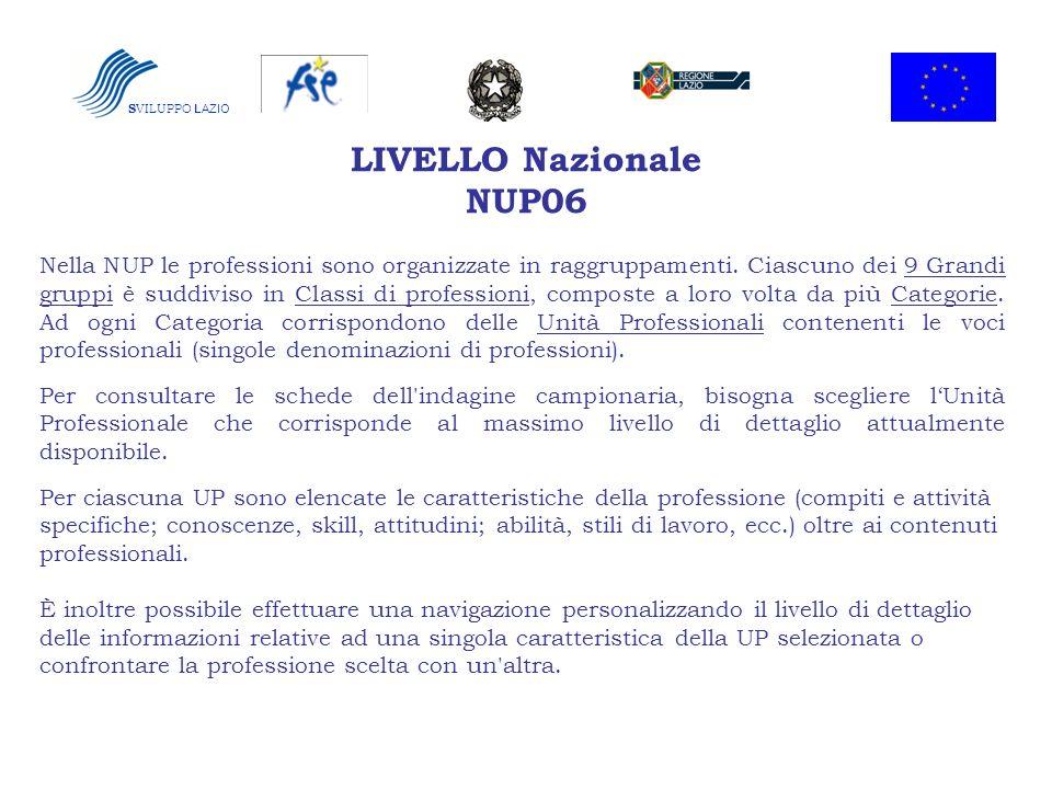 LIVELLO Nazionale NUP06 Nella NUP le professioni sono organizzate in raggruppamenti. Ciascuno dei 9 Grandi gruppi è suddiviso in Classi di professioni