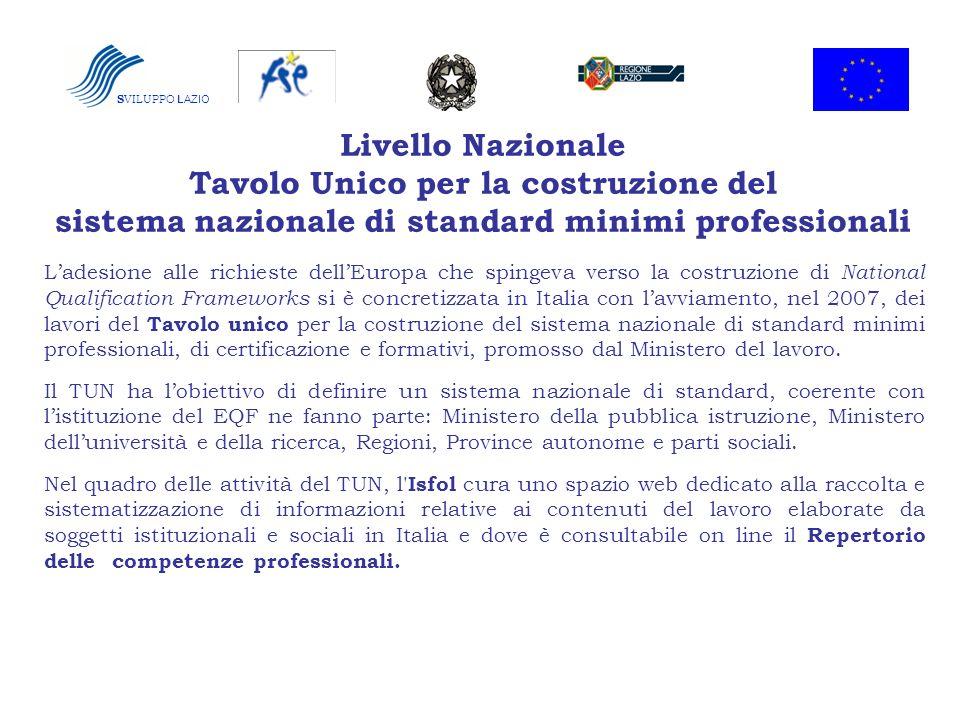 Livello Nazionale Tavolo Unico per la costruzione del sistema nazionale di standard minimi professionali Ladesione alle richieste dellEuropa che sping