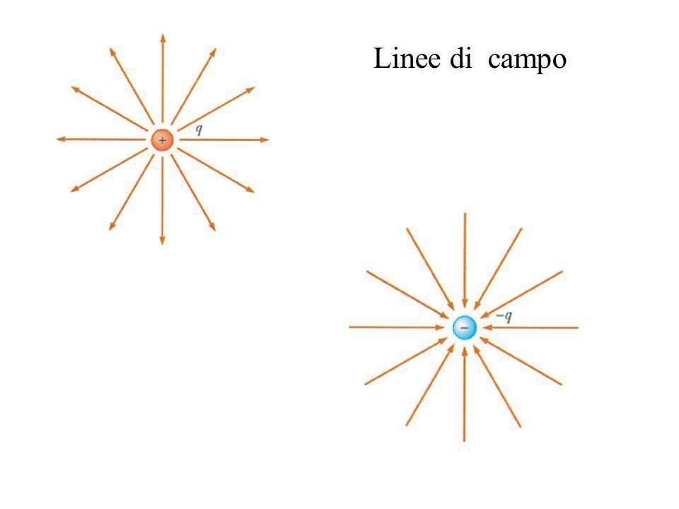 Linee di campo