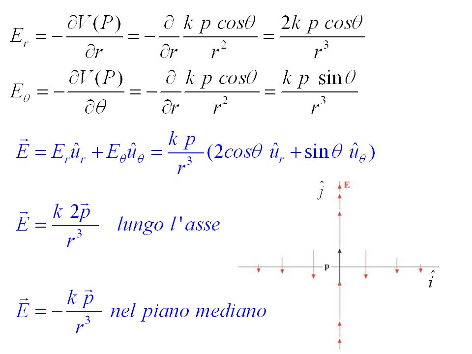 Linee di campo in un qualsiasi piano contenente lasse del dipolo