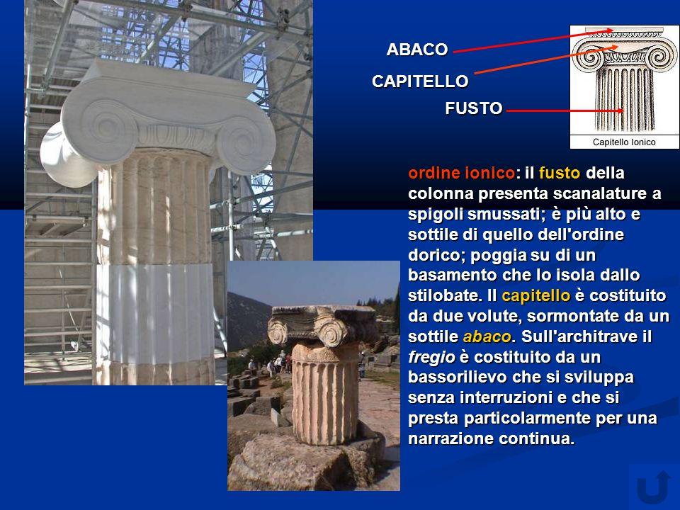 ordine ionico: il fusto della colonna presenta scanalature a spigoli smussati; è più alto e sottile di quello dell ordine dorico; poggia su di un basamento che lo isola dallo stilobate.