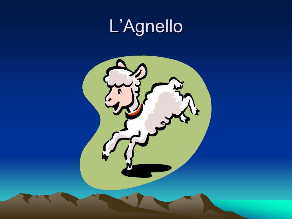 LAgnello