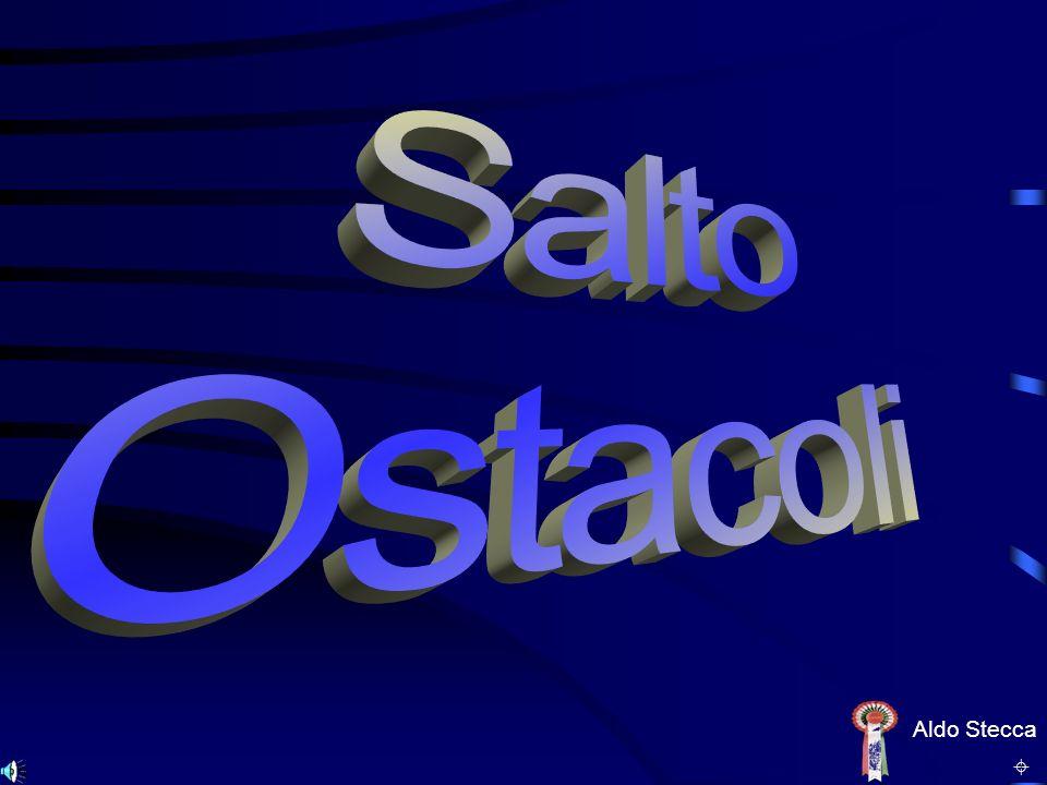 Campionato Regionale 2003 DEBUTTANTI Seniores 1° Isotta NARDI GRECO 2° Marisa BONA 1° Isotta NARDI GRECO 2° Marisa BONA E N D U R A N C EE N D U R A N C E