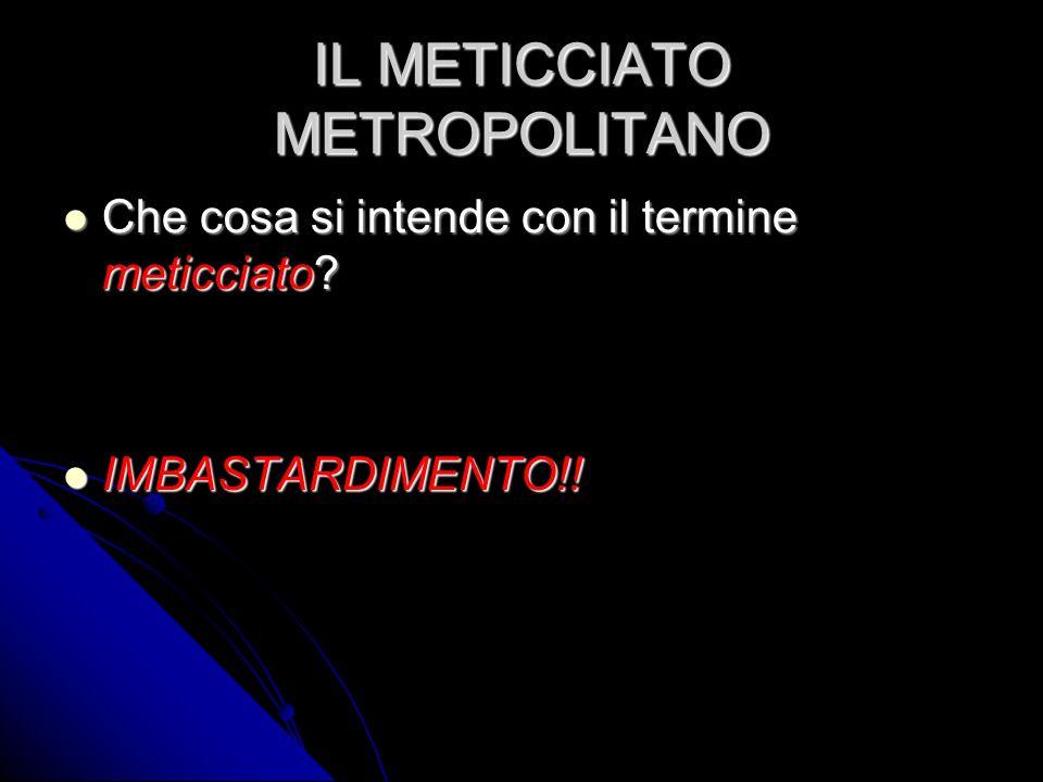 Un pò di numeri Nel 2005 abitavano a Milano 183.600 stranieri di cui: 76,1% con la residenza 7,2% con il permesso di soggiorno ma senza residenza 16,7% irregolari