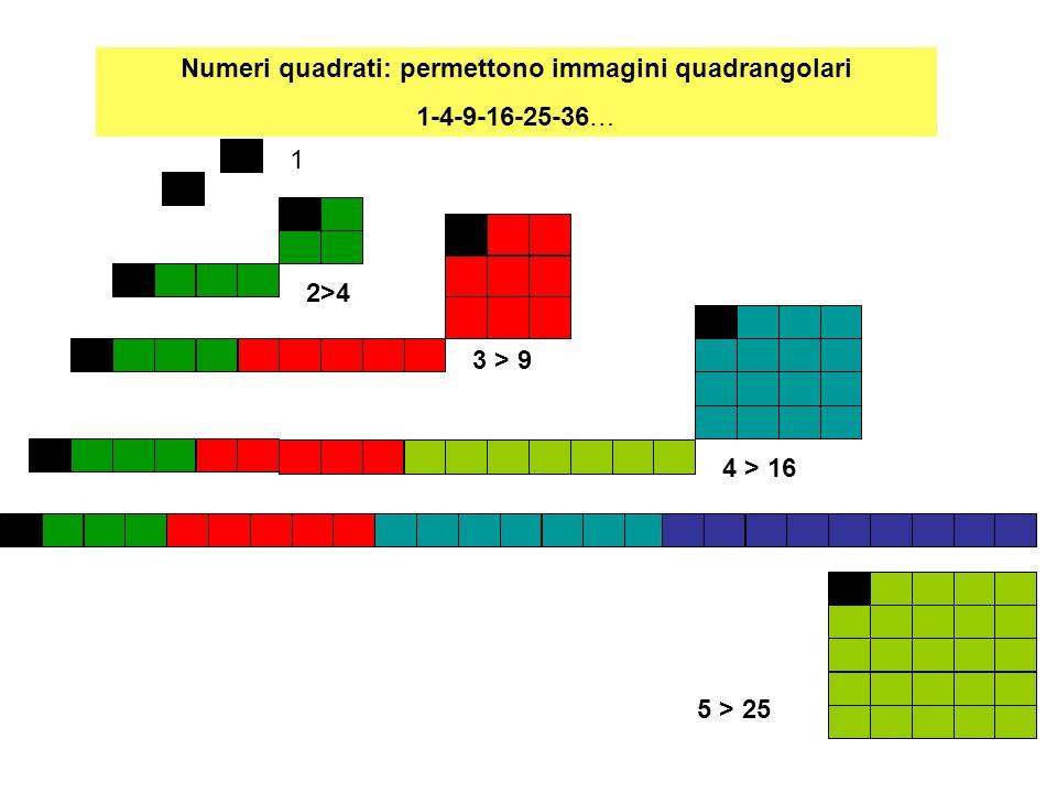 Numeri quadrati: permettono immagini quadrangolari 1-4-9-16-25-36… 1 2>4 3 > 9 4 > 16 5 > 25