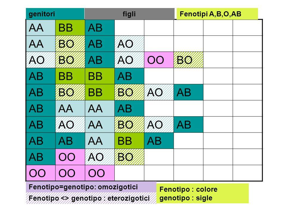 AABBAB AABOABAO BOABAOOOBO ABBB AB BOBBBOAOAB AA AB AOAABOAOAB AABBAB OOAOBO OO genitorifigli Fenotipo=genotipo: omozigotici Fenotipo <> genotipo : et