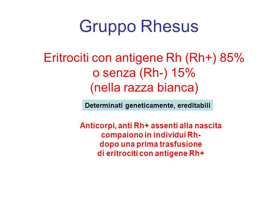 Gruppo Rhesus Eritrociti con antigene Rh (Rh+) 85% o senza (Rh-) 15% (nella razza bianca) Determinati geneticamente, ereditabili Anticorpi, anti Rh+ a