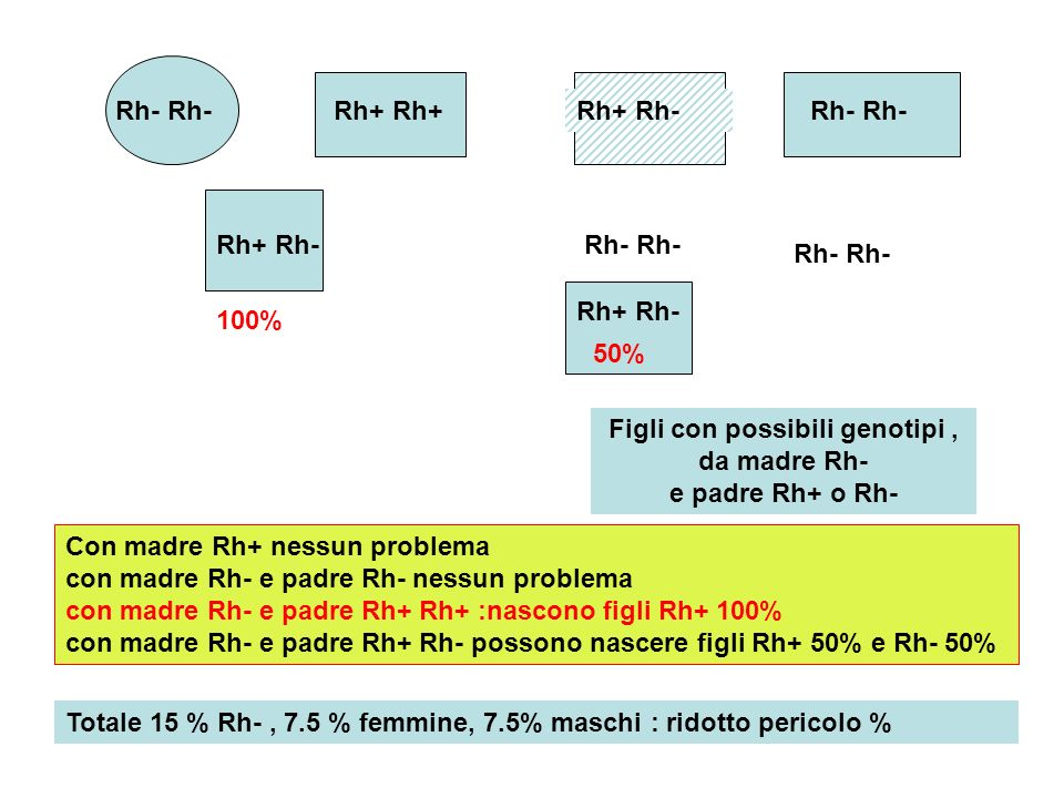 Rh- Rh+ Rh- Rh+ Rh- Rh+ Rh- Figli con possibili genotipi, da madre Rh- e padre Rh+ o Rh- 100% Rh+ Rh- 50% Con madre Rh+ nessun problema con madre Rh-