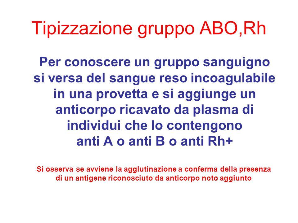 Tipizzazione gruppo ABO,Rh Per conoscere un gruppo sanguigno si versa del sangue reso incoagulabile in una provetta e si aggiunge un anticorpo ricavat
