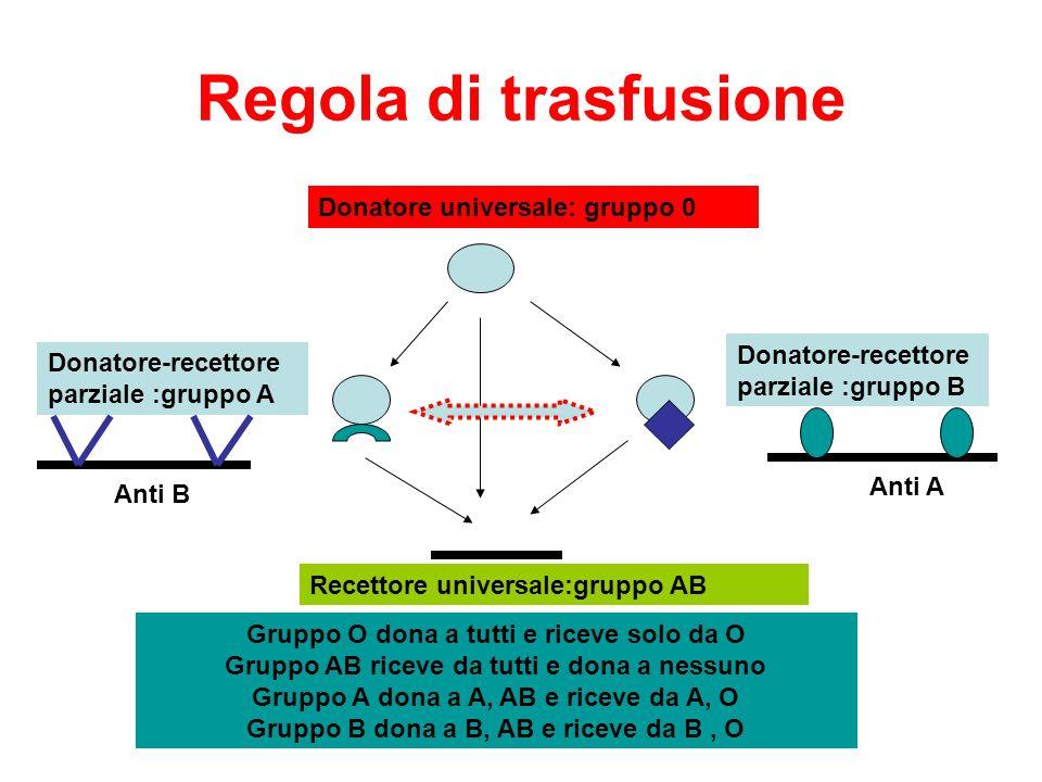 Ereditarietà gruppo sanguigno Antigeni e anticorpi sono sintetizzati sotto controllo genico i geni sono trasmessi dai genitori ai figli secondo regole note: allele A, B sono dominanti rispetto a O e codominanti tra loro allele Rh+ dominante su Rh- anti A, anti B presenti alla nascita anti Rh+ compare dopo prima trasfusione