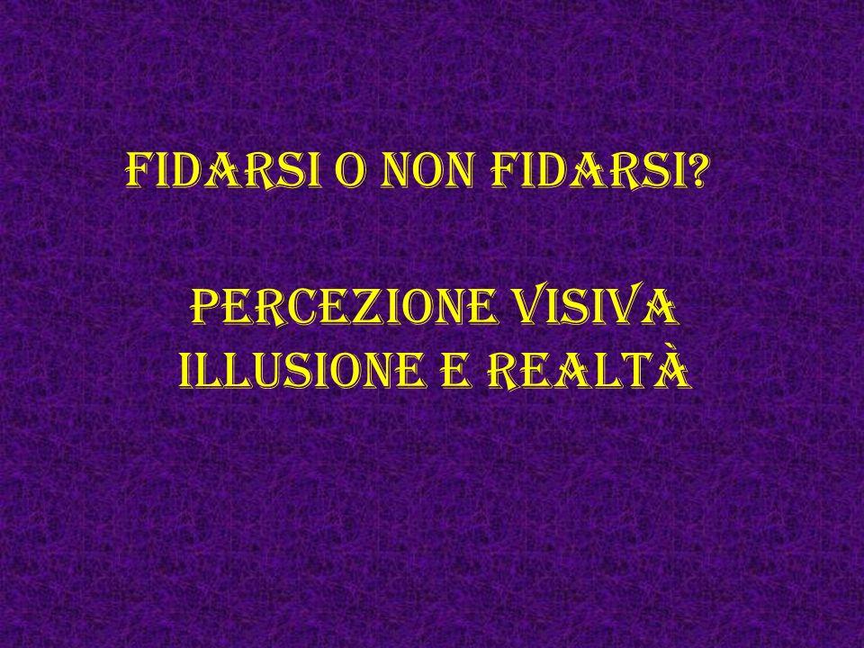 Fidarsi o non fidarsi? Percezione visiva illusione e realtà