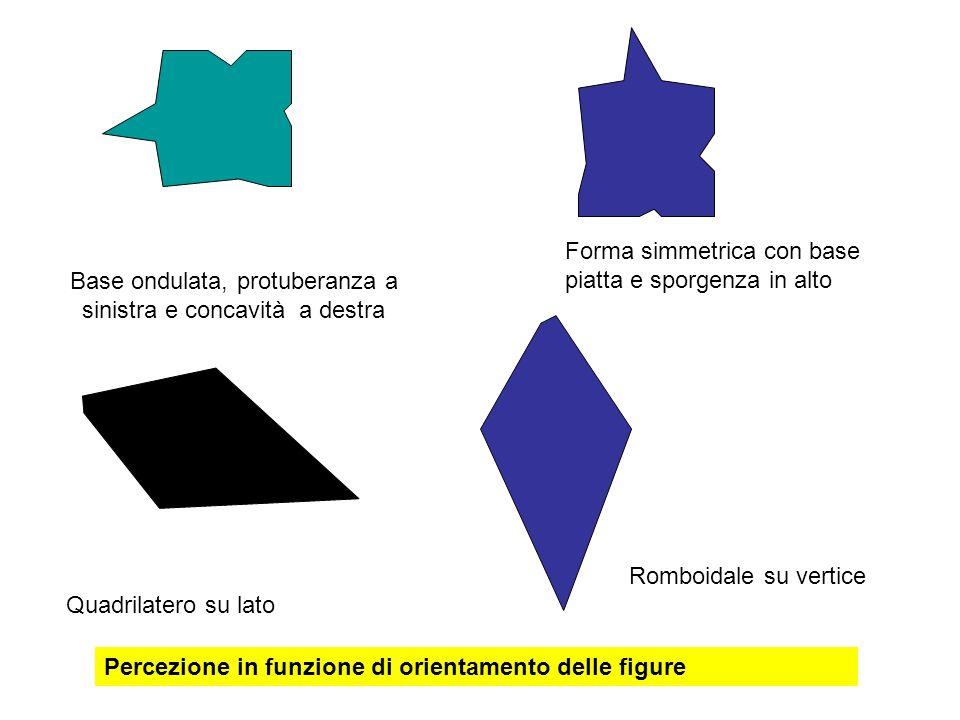 Quadrilatero su lato Romboidale su vertice Base ondulata, protuberanza a sinistra e concavità a destra Forma simmetrica con base piatta e sporgenza in