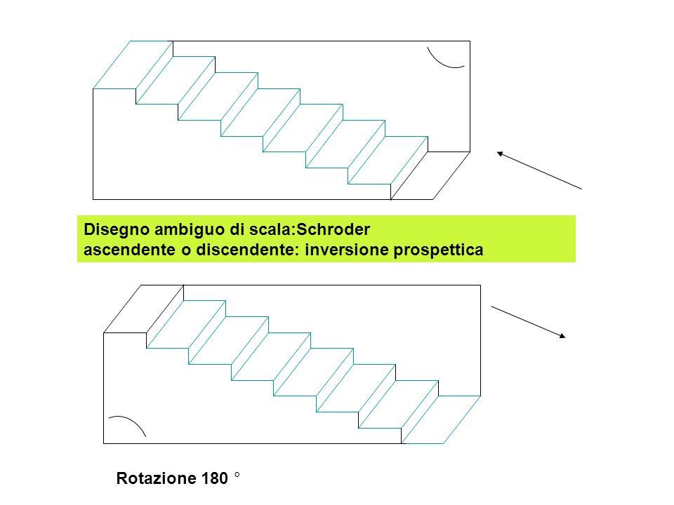 Disegno ambiguo di scala:Schroder ascendente o discendente: inversione prospettica Rotazione 180 °