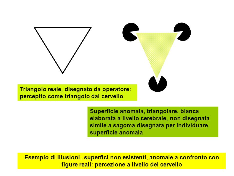 Triangolo reale, disegnato da operatore: percepito come triangolo dal cervello Superficie anomala, triangolare, bianca elaborata a livello cerebrale,