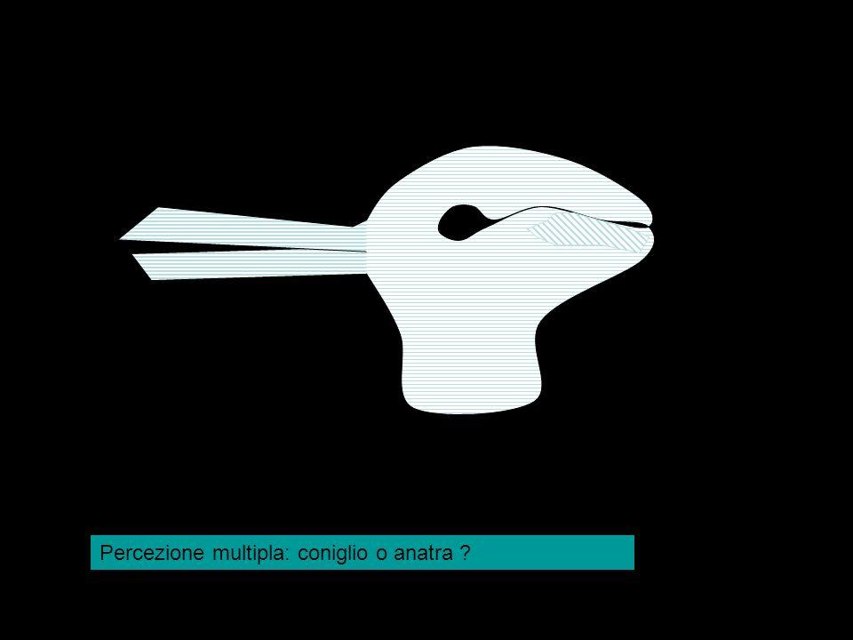 Percezione multipla: coniglio o anatra ?