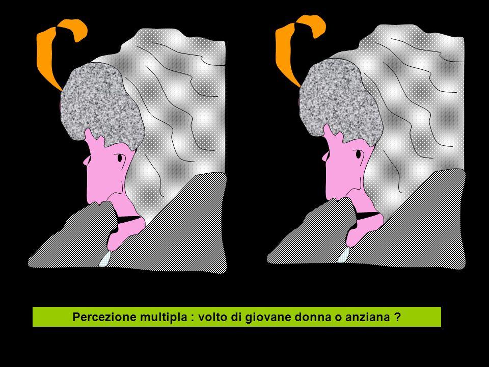 Percezione multipla : volto di giovane donna o anziana ?