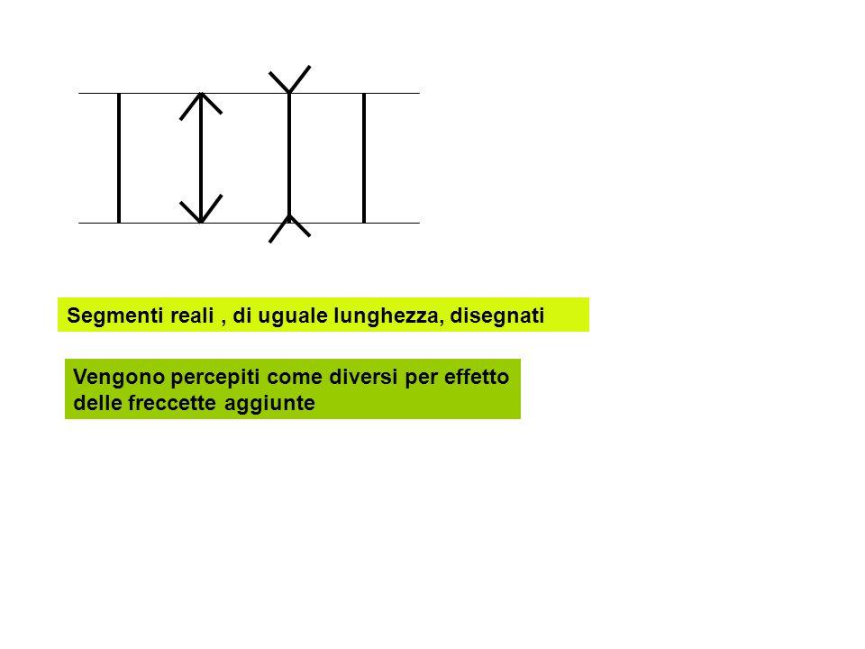 Segmenti reali, di uguale lunghezza, disegnati Vengono percepiti come diversi per effetto delle freccette aggiunte
