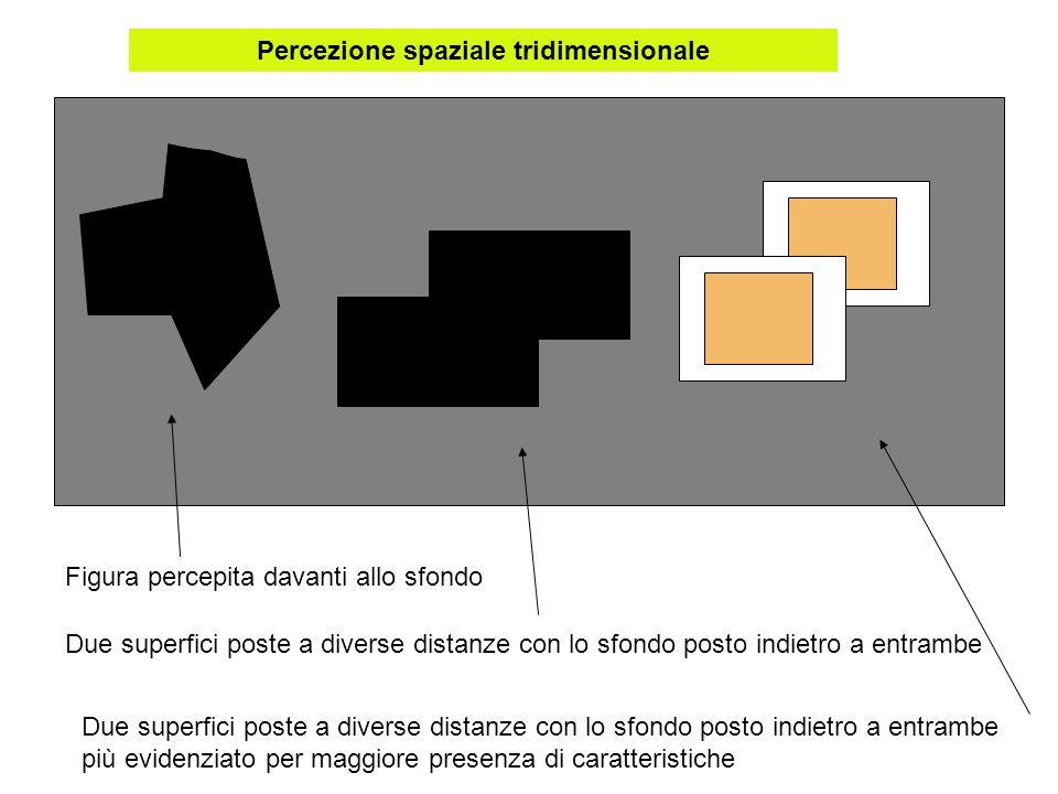 Figura percepita davanti allo sfondo Due superfici poste a diverse distanze con lo sfondo posto indietro a entrambe Due superfici poste a diverse dist