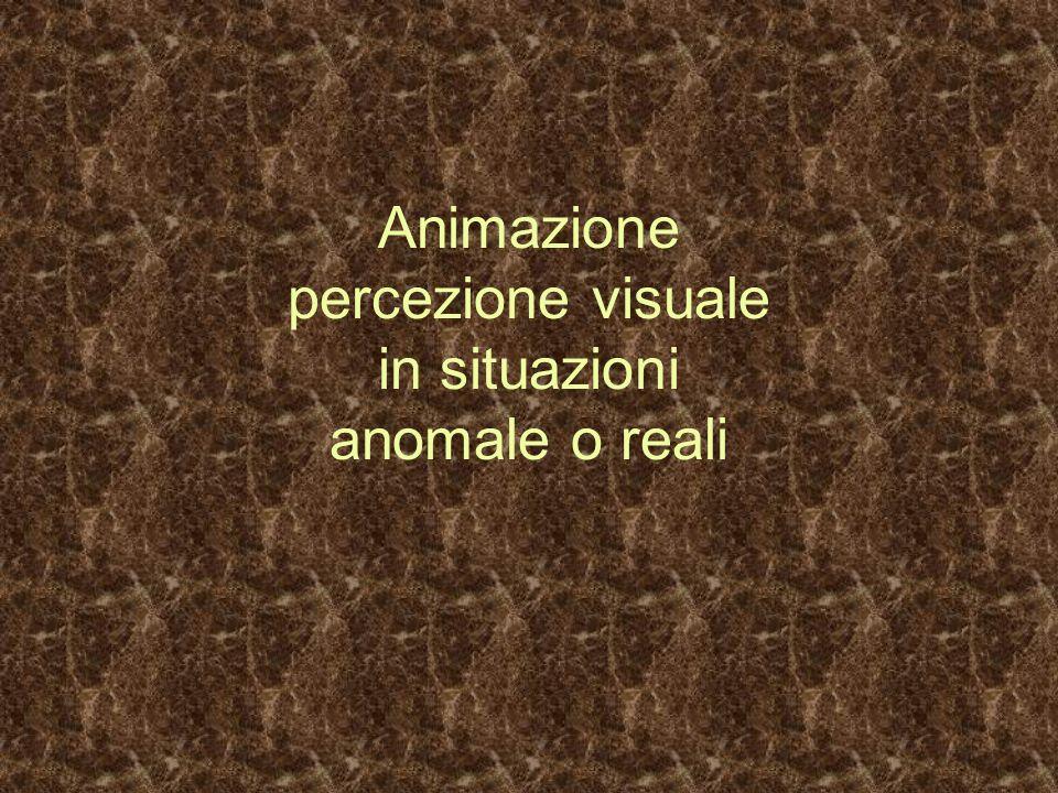 Animazione percezione visuale in situazioni anomale o reali