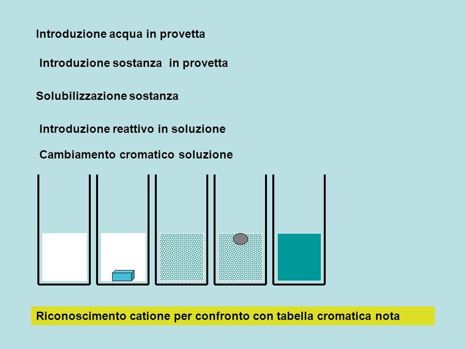 Introduzione acqua in provetta Introduzione sostanza in provetta Solubilizzazione sostanza Introduzione reattivo in soluzione Cambiamento cromatico soluzione