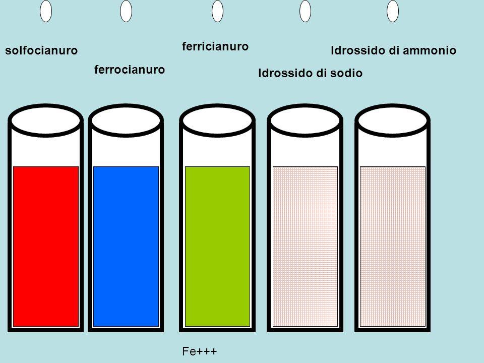 Soluzione di sale ferroso Ferrocianuro di K Ferricianuro di K Idrossido di sodio Idrossido di ammonio