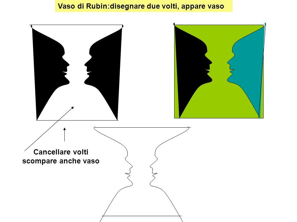 Vaso di Rubin:figure ambigue: vaso o volto Disegnare volti appare vaso Disegnare vaso appaiono volti Cancellare vaso scompaiono volti Cancellare volto scompare vaso
