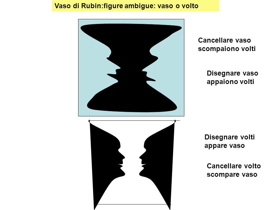 Vaso di Rubin:figure ambigue: vaso o volto Disegnare volti appare vaso Disegnare vaso appaiono volti Cancellare vaso scompaiono volti Cancellare volto