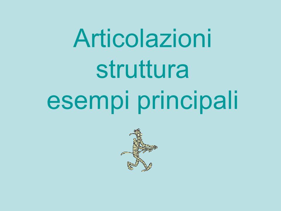 Articolazioni struttura esempi principali