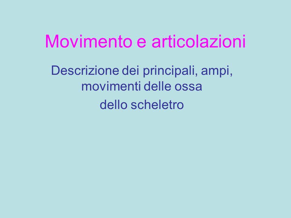 Movimento e articolazioni Descrizione dei principali, ampi, movimenti delle ossa dello scheletro