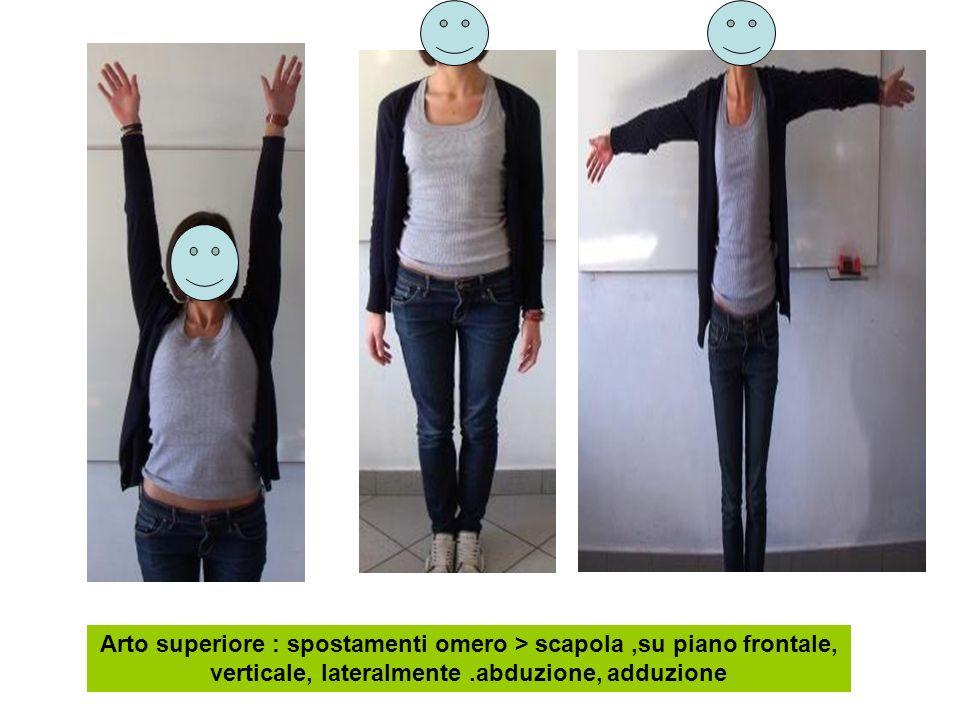 Arto superiore : spostamenti omero > scapola,su piano frontale, verticale, lateralmente.abduzione, adduzione