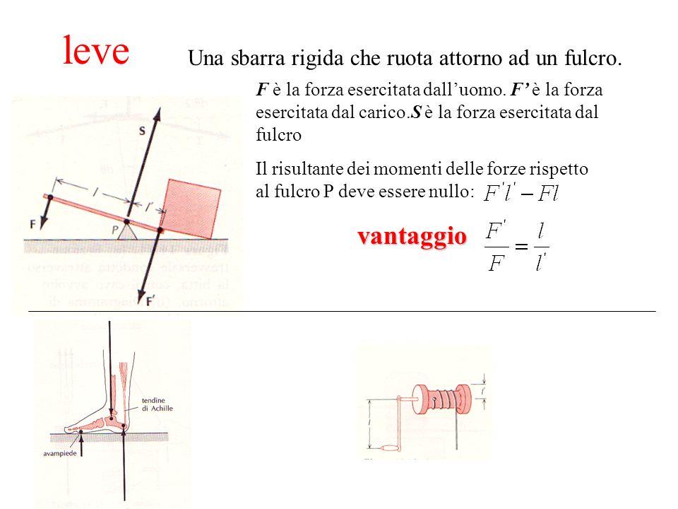 leve Una sbarra rigida che ruota attorno ad un fulcro. F è la forza esercitata dalluomo. F è la forza esercitata dal carico.S è la forza esercitata da