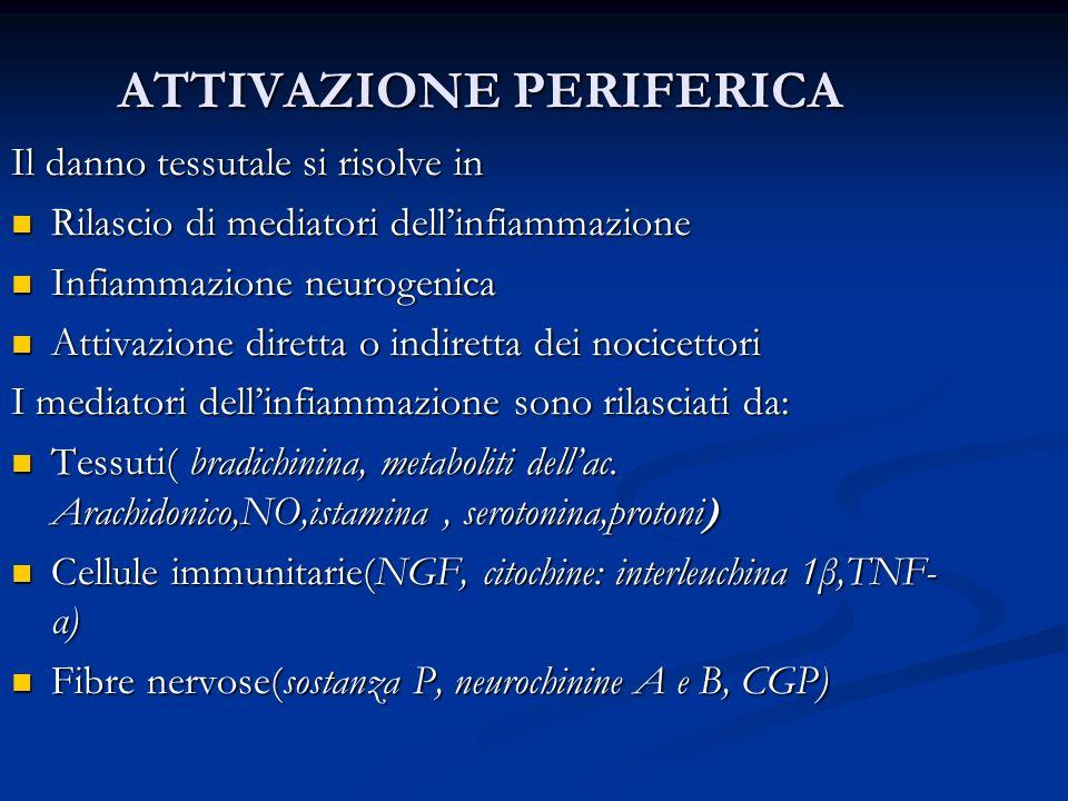 ATTIVAZIONE PERIFERICA Il danno tessutale si risolve in Rilascio di mediatori dellinfiammazione Rilascio di mediatori dellinfiammazione Infiammazione