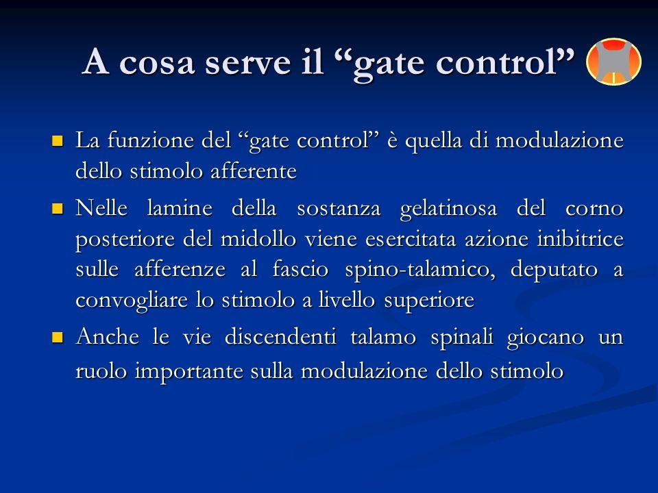 La funzione del gate control è quella di modulazione dello stimolo afferente La funzione del gate control è quella di modulazione dello stimolo affere