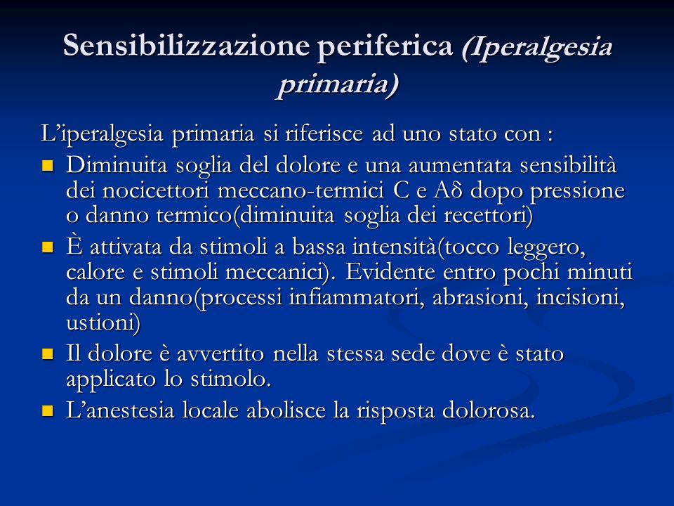 Sensibilizzazione periferica (Iperalgesia primaria) Liperalgesia primaria si riferisce ad uno stato con : Diminuita soglia del dolore e una aumentata