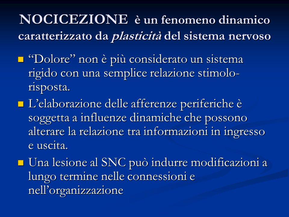 NOCICEZIONE è un fenomeno dinamico caratterizzato da plasticità del sistema nervoso Dolore non è più considerato un sistema rigido con una semplice re