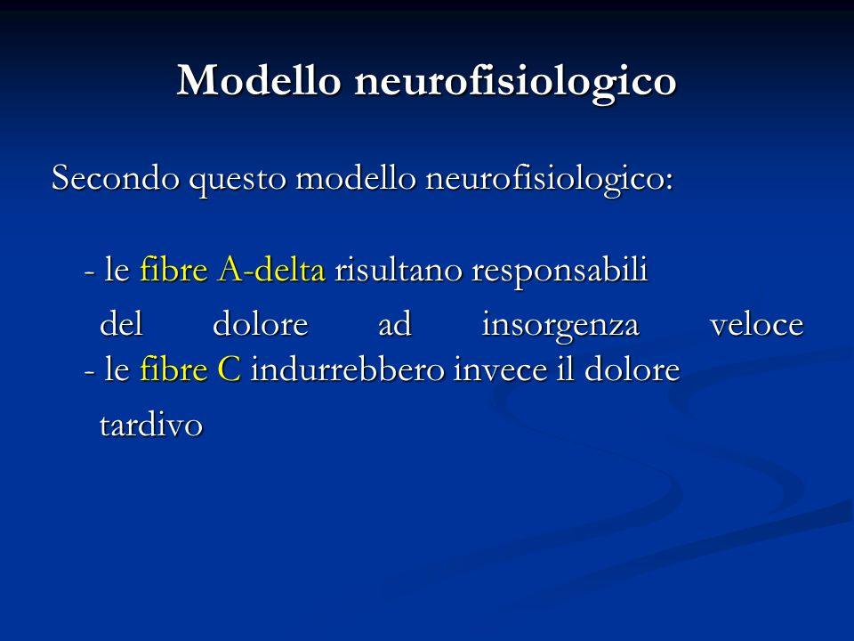 Modello neurofisiologico Secondo questo modello neurofisiologico: - le fibre A-delta risultano responsabili del dolore ad insorgenza veloce - le fibre