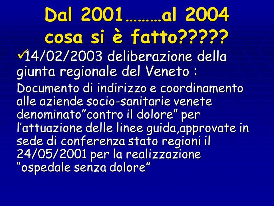 Dal 2001………al 2004 cosa si è fatto????? 14/02/2003 deliberazione della giunta regionale del Veneto : 14/02/2003 deliberazione della giunta regionale d