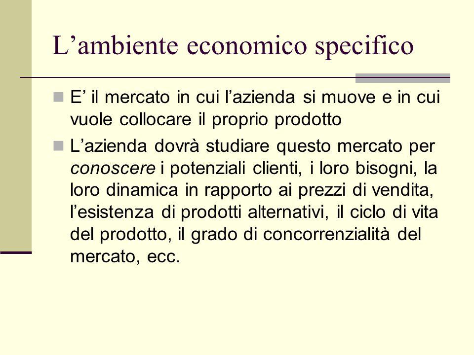 Lambiente economico specifico E il mercato in cui lazienda si muove e in cui vuole collocare il proprio prodotto Lazienda dovrà studiare questo mercat