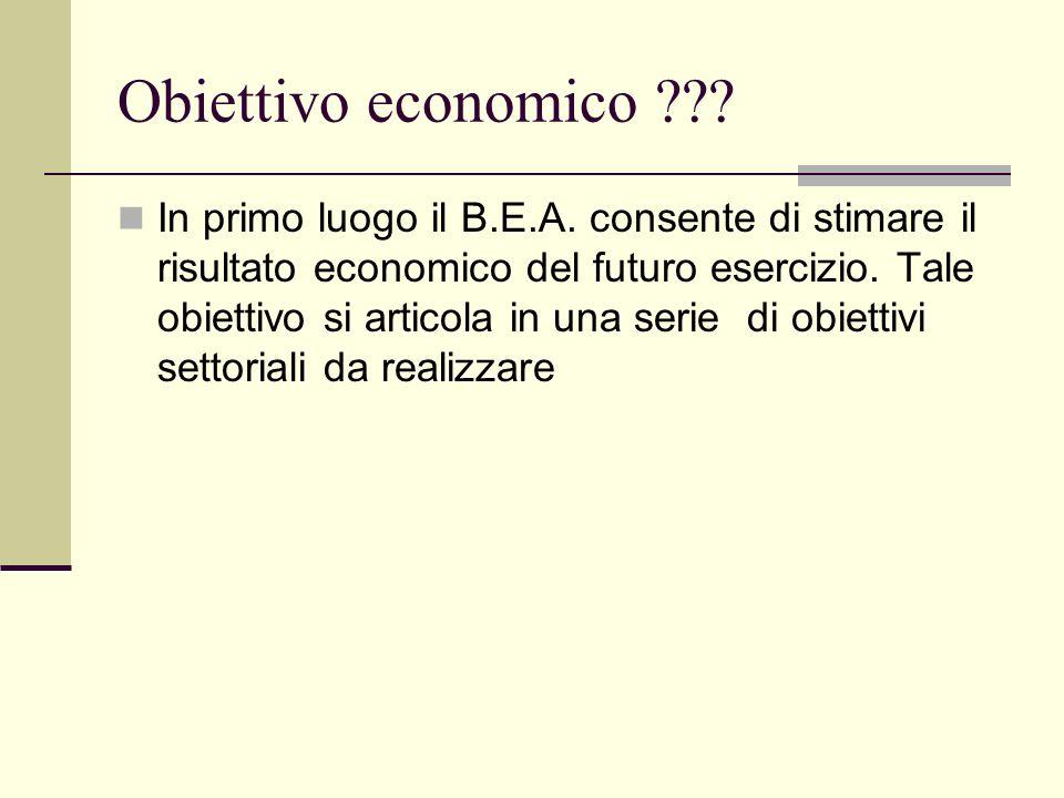 Obiettivo economico ??? In primo luogo il B.E.A. consente di stimare il risultato economico del futuro esercizio. Tale obiettivo si articola in una se