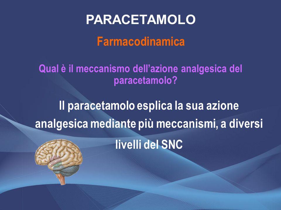 Qual è il meccanismo dellazione analgesica del paracetamolo? Farmacodinamica PARACETAMOLO Il paracetamolo esplica la sua azione analgesica mediante pi